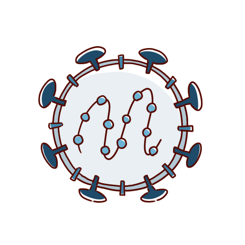 コロナウイルスの内部のイラスト(白黒対応)